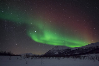 Northern Lights near Tromsø