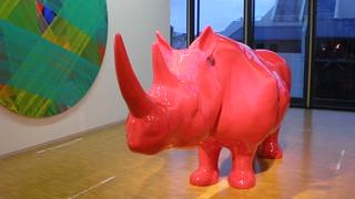 Rhino rose