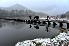 Lishui, Zhejiang 浙江 麗水 2014