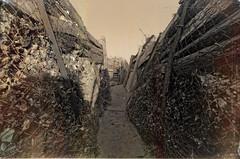 Chemins de Mémoire - 1ère guerre mondiale (1914-1918)