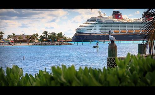 pelican bahamas cinematic dcl castawaycay disneycruiseline disneyfantasy halloweenonthehighseas