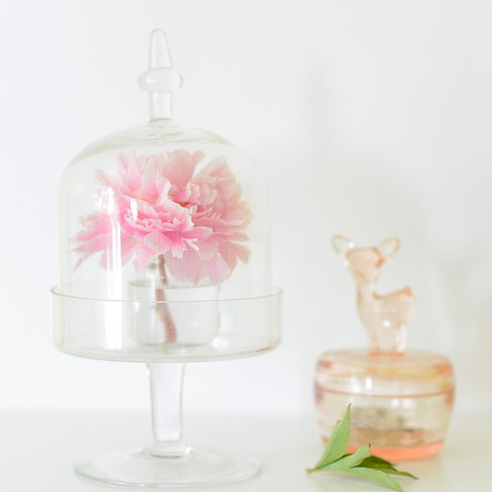 Pink peony and bambi jewellery box