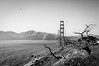 BW Golden Gate Bridge 1 of 2