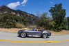 Shelby Cobra by SteveWillard