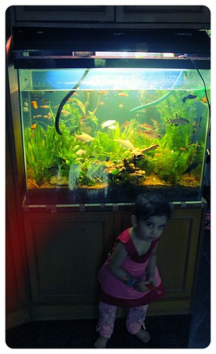 Marziyas Fish Tank... Nerjis Gives A Pose by firoze shakir photographerno1