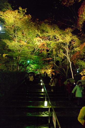 【写真】2012 紅葉 : 永観堂/2020-05-30/IMGP6256