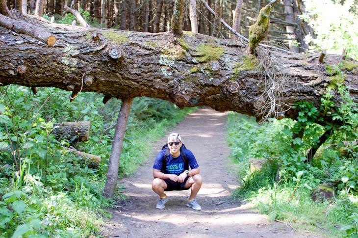 @ Alamere Falls Trail