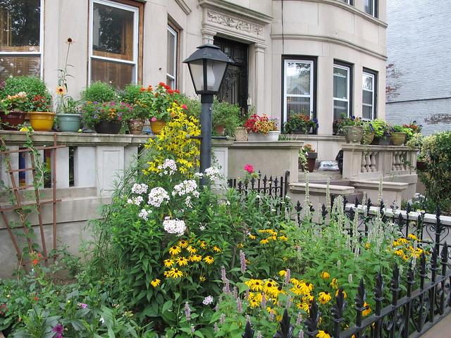 Sterling Street between Washington and Bedford Avenues, Prospect-Lefferts Garden