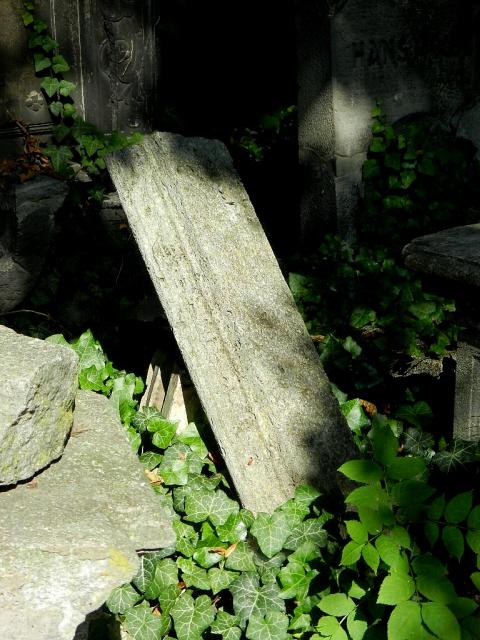Jüdischer Friedhof  Berlin_2013_11