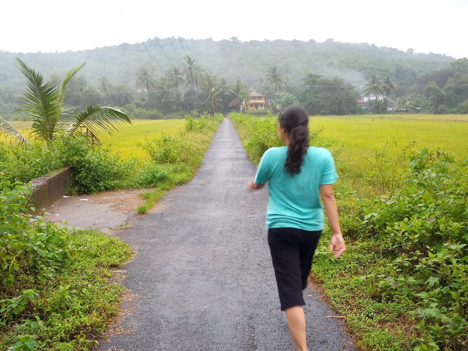 A walk around Parra