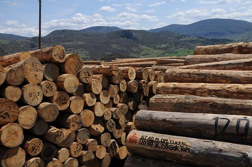 圖片作者:United Nations Development Programme in Europe and CIS,圖片來源:http://www.flickr.com/photos/undpeuropeandcis/8099867489/,本圖符合CC授權使用。