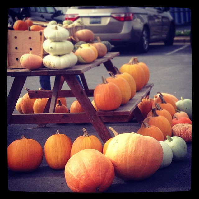 The happiest table at the farmer's market. #yayfall