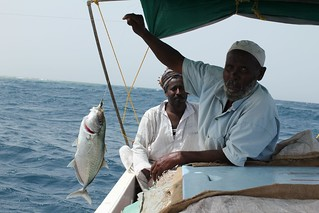 2013-Sudan fisheries project (3)