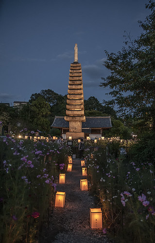 Hannya-ji Light up