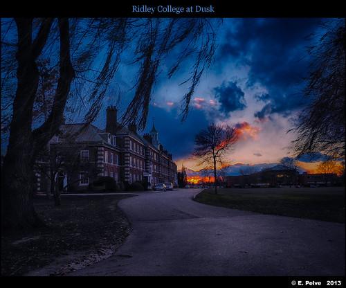 november ontario canada campus dusk backlighting ridleycollege olympusomdem1 stecatharines olympusmzuiko1240mmf28pro