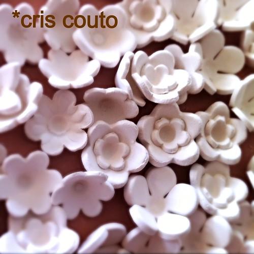 Minhas florzinhas... by cris couto 73