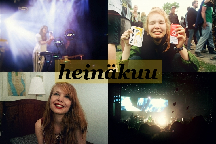 heina2013