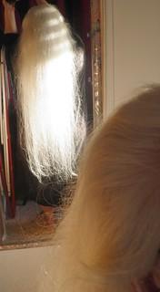 Doreen Ellen Bell-Dotan - Hair