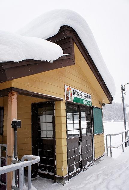日本秋田行23