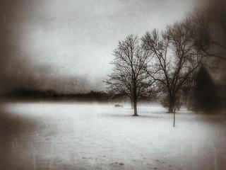 Winter Never Ending