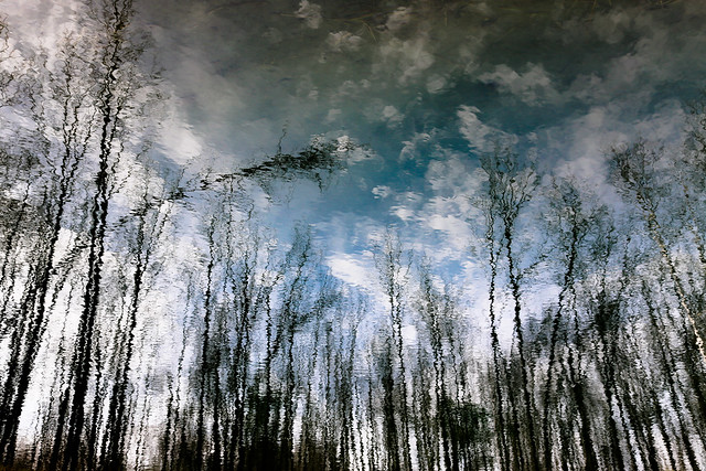 Judith's Pond | 09:14:09