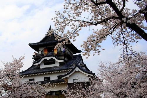 Inuyama Spring 2014 032r