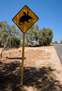 Bandicoot Crossing