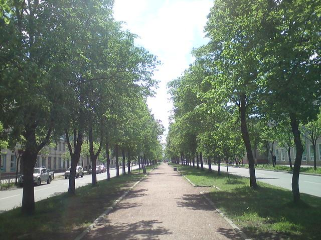 Lomonosov: alley // Ломоносов: сквер-аллея