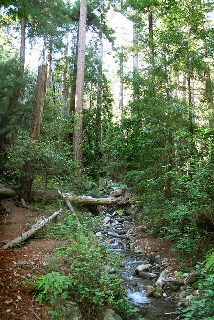 Eswolden Trail