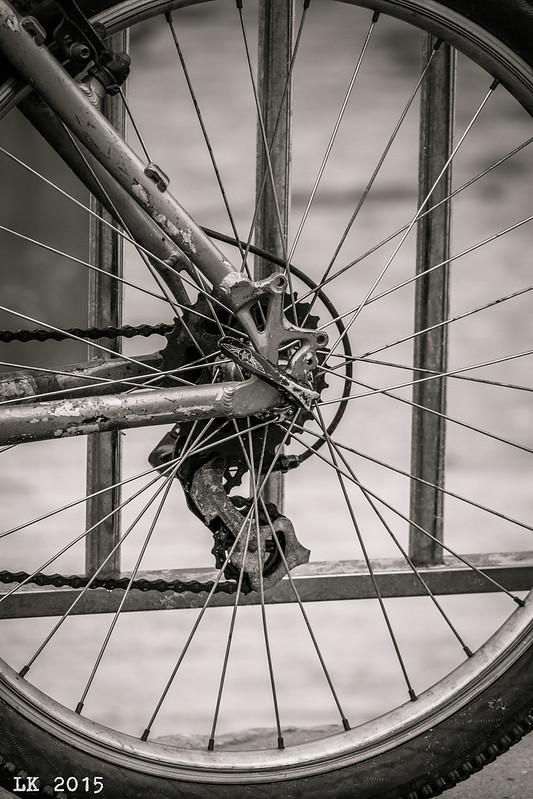Rear Wheel. HaTzuk Beach, Tel Aviv