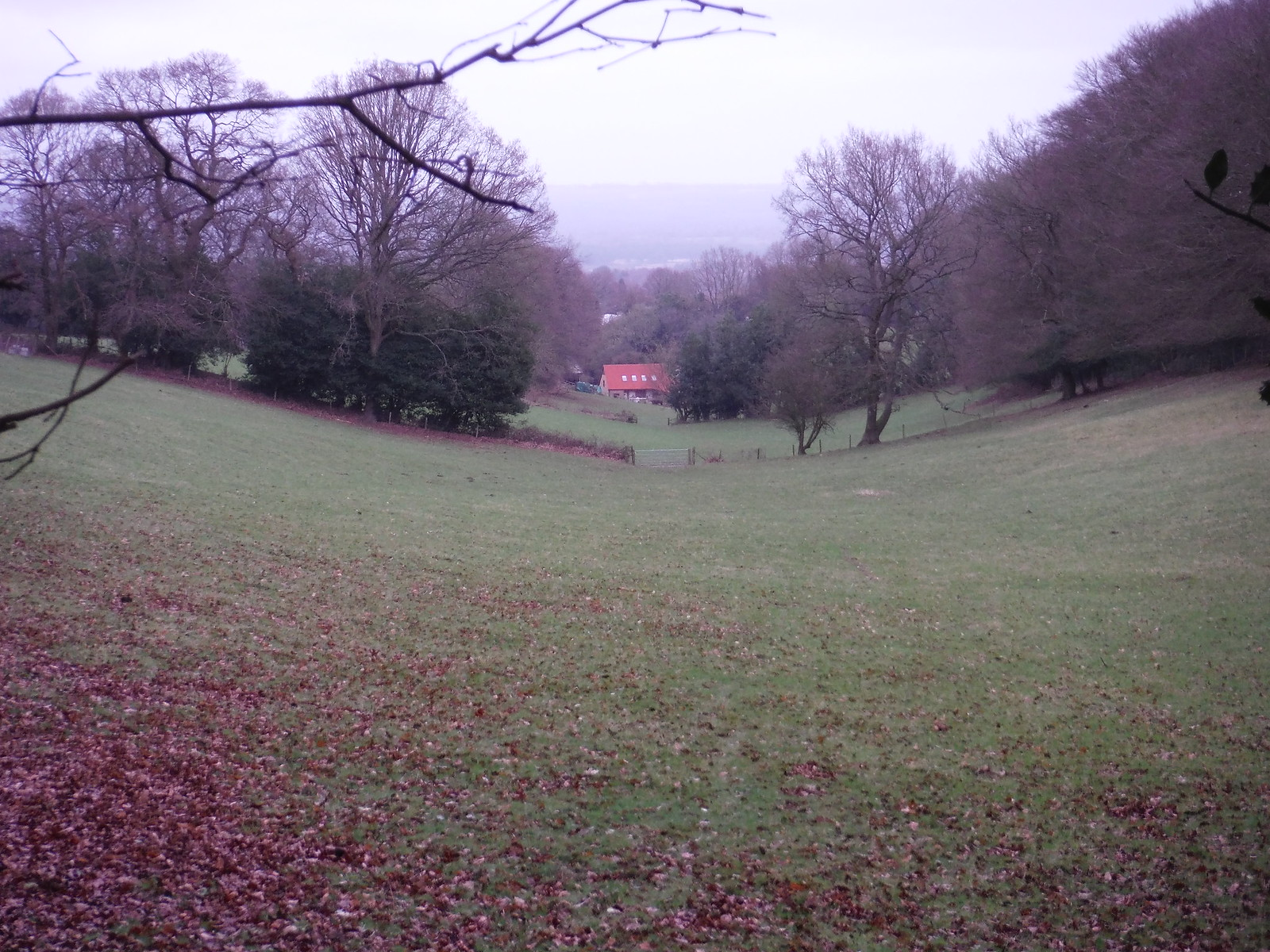 Farm at bottom of unnamed Glade SWC Walk 144 Haslemere to Farnham