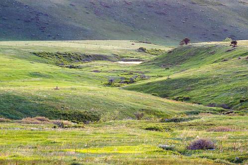 morning sunrise golden spring colorado unitedstates prairie grasslands plainview jeffersoncountyopenspace