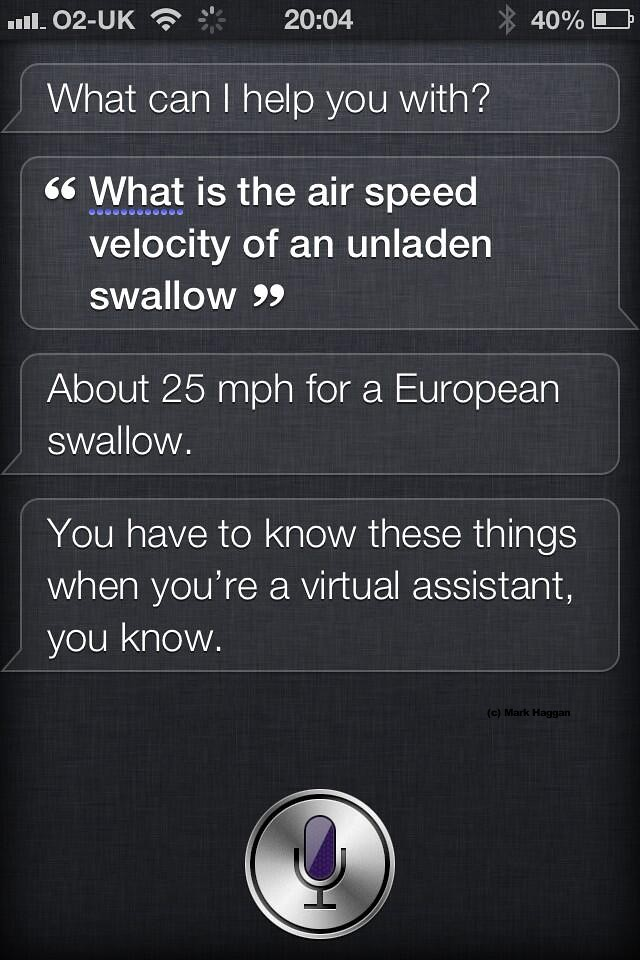 What is the air speed velocity of an unladen swallow?
