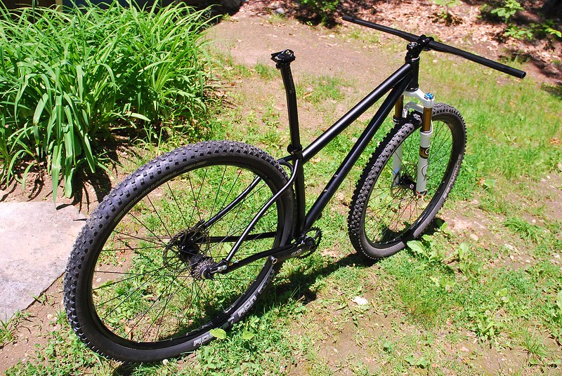 Paul's 29er : Ready to RIP