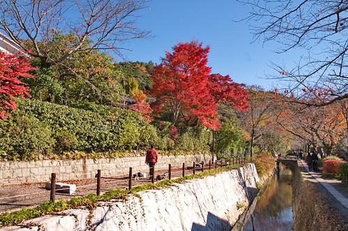 【写真】2012 紅葉 : 哲学の道/2020-10-03/IMGP7383