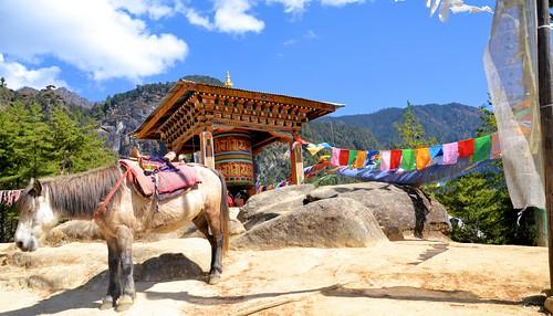 travel trekking tour bhutan tourist trail paro pilgrimage tigersnest taktsangpalphugmonastery