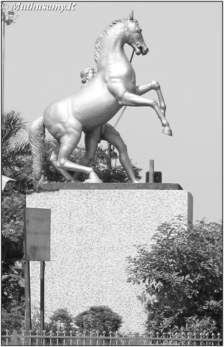 Two Horse (Equestrian) statues at Gemini Chennai by Muthusamy Photostream
