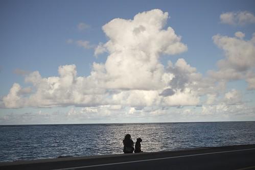JJ C9 04 157 Kahuku Oahu Hawaii EP3 SX25A#