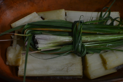Sugar cane & lemongrass stalks and leaves  in clay pot for Luke Nguyen's Ga Nuong Lu -  Chicken, Dry Steamed in Sea Salt and Fresh Sugar Cane