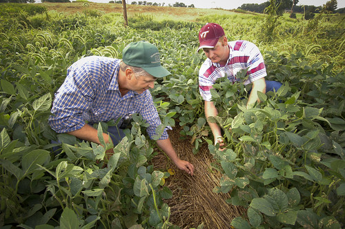 Small and medium-sized farmers could see help in growing their operation thanks to programs that will be developed at 10 universities that were funded by USDA's National Institute of Food and Agriculture this week.