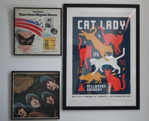 cat lady
