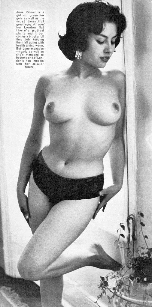 italian vintage escort magazine