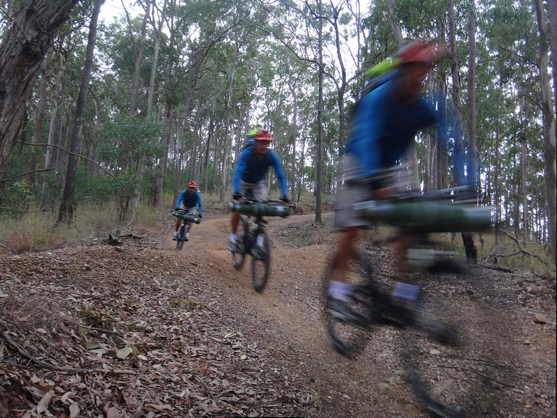 Ironbark Fire Trail