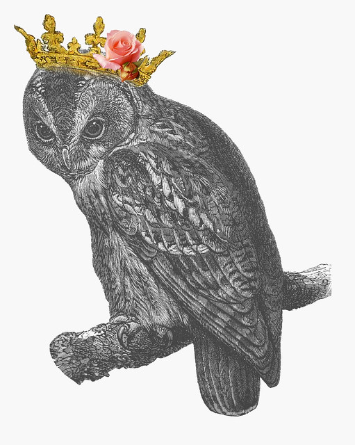 Owl Crown