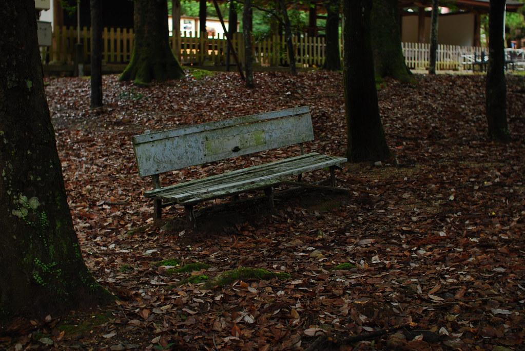 境内の森のベンチ