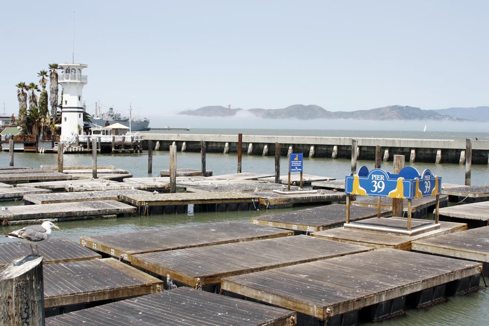 Pier 39 - San Fran, California - no sea lions
