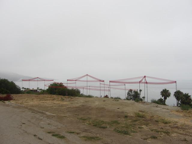 story poles