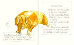 03-06-13 by Anita Davies