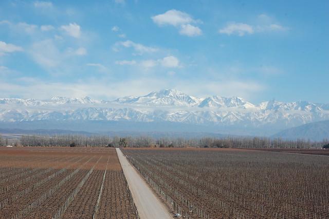 View from Bodega Catena Zapata, Luján de Cuyo, Mendoza