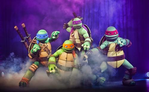 Teenage Mutant Ninja Turtles Nickelodeon